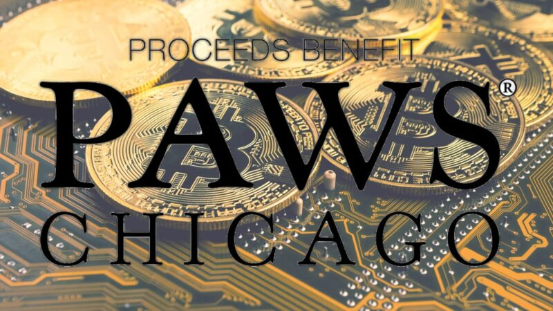"""No-Kill Animal Organization PAWS Chicago Launches """"Dogenations"""", Accepting Crypto Donations"""